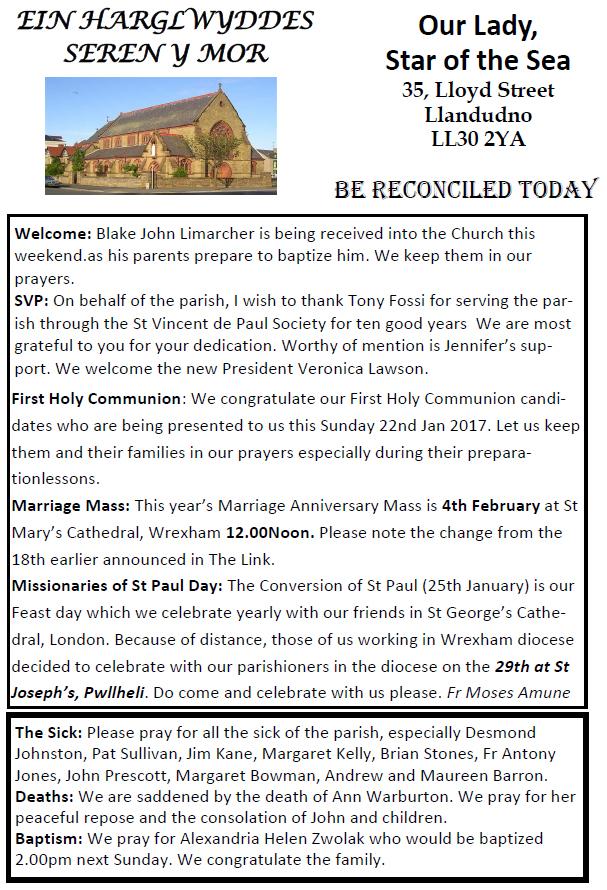 Catholic Parish Newsletter